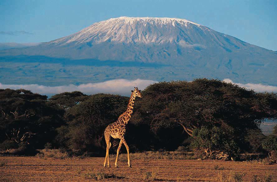 mount kilimanjaro jess boonstra climb